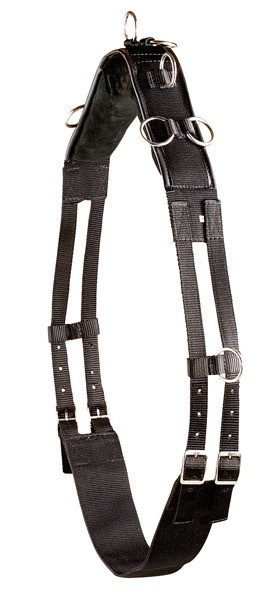 Pfiff-Longeersingel-Nylon-zwart