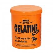 Horse-Fitform-Gelatinaat-wit-1000gr